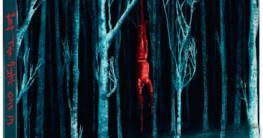 So finster die Nacht - Zavvi Steelbook