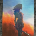 Wonder Woman Full Slip Rückseite