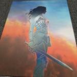 Wonder Woman Full Slip Rückseite 2