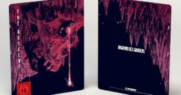 FuturePak-The-Descent